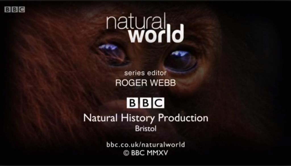 NaturalworldBBC