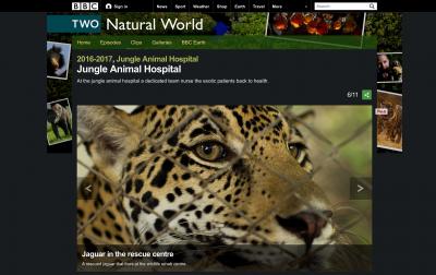 BBC_JungleHospitalAnimal_gallery_6