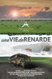 A Wild Fox Life France 5